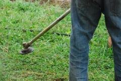 Grass cutting services